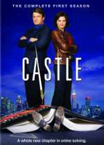 Castle (A Mystery on TV Series)