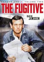 The Fugitive (1963): Season One (V2)